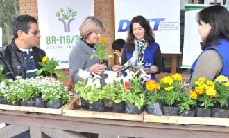 DNIT distribui mudas de flores para marcar o início da primavera