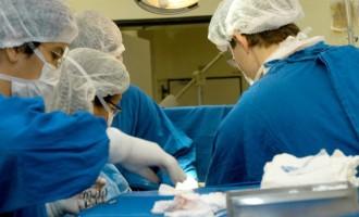 Negativa familiar ainda é o principal motivo da não doação de órgãos