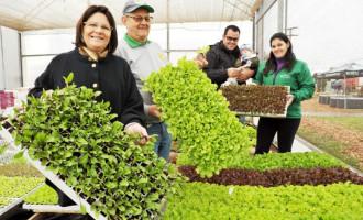 Agricultura: Seminário sobre produção regional tem início nesta terça na Embrapa