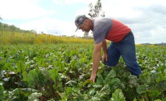 87ª  Expofeira: Embrapa destaca Agricultura Familiar e Produção Leiteira