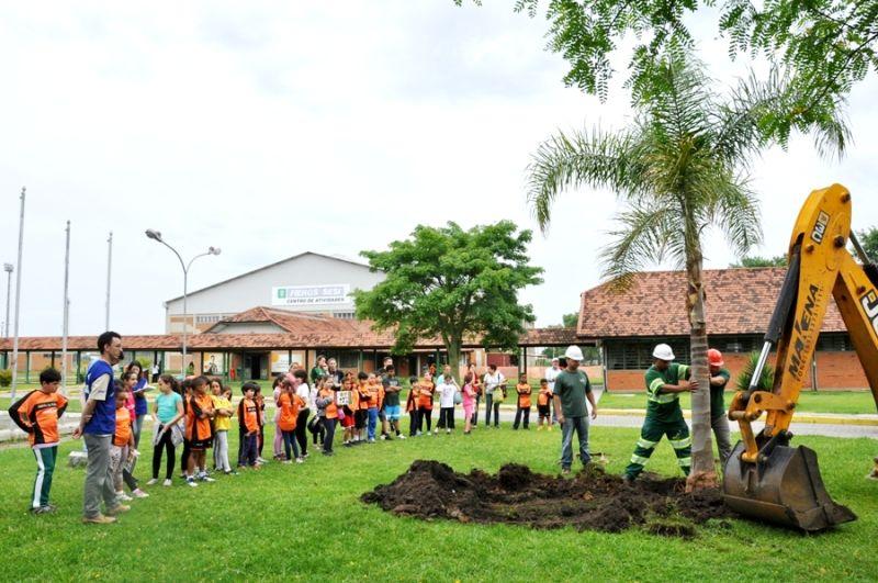 Arvores foram transplantadas do Contorno de Pelotas contemplando as ações realizadas pelo Programa de Educação Ambiental.