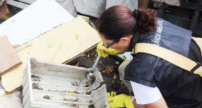 Pelotas recebe mais de R$130 mil para combater Dengue