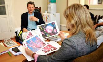 Embrapa propõe florir Pelotas com pessegueiros