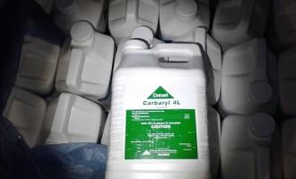 SDR inicia segundo recolhimento de embalagens de agrotóxicos