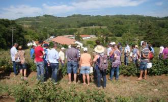 Dia de Campo apresenta agroecologia como alternativa na agricultura familiar