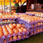 Feira Ovos