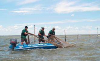 OPERAÇÃO GOLFINHO :  PATRAM combate pesca irregular no litoral