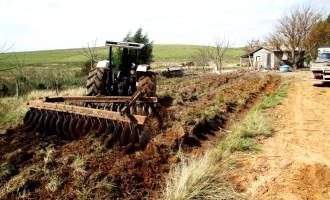 Merenda Escolar: compra de hortigranjeiros considera calendário do produtor rural