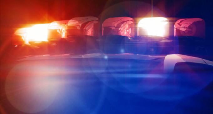 Plantão de Polícia :  Ladrões são presos no Centro