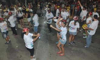 CAPÃO DO LEÃO: Público aprova Carnaval fora de época
