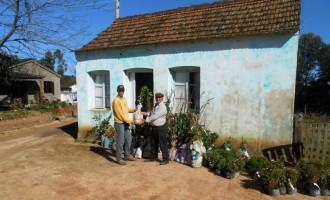 SDR entrega mudas a agricultores