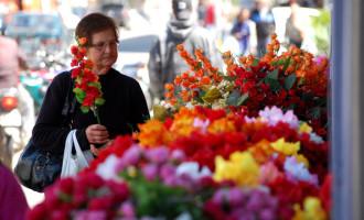 FINADOS  : Procon orienta para compra de flores e velas
