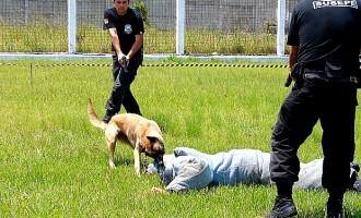 Susepe nomeará mais agentes penitenciários