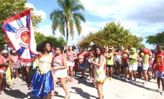 CARNAVAL : Fim de semana com blocos na rua