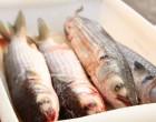 Semana do Peixe inicia dia 6 no Centro e em Bairros