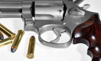 SEMINÁRIO : Armamento, tiro e munição serão  abordados em minicurso na UCPel