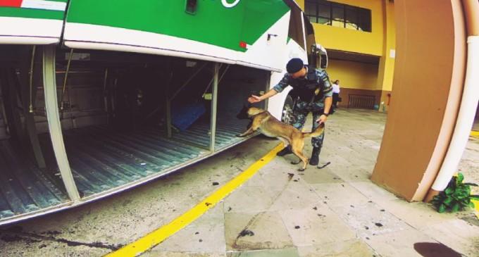 RODOVIÁRIAS : BM executa Operação Avante em diversas cidades gaúchas