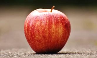 Os muitos benefícios da maçã