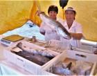 Dezoito bancas em Pelotas mantêm vendas de peixes durante todo o ano. Veja aonde comprar