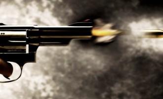 ARMAS : Verdades e mentiras sobre a posse