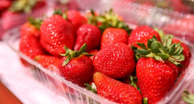 Feiras comercializam excedente da safra de morango