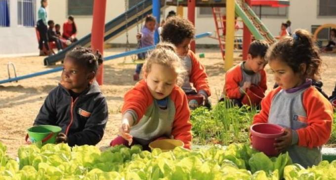 Projeto Escola Mais Verde transforma educandários infantis de Pelotas