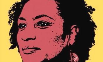 MARIELLE VIVE  : A transformação social no legado da luta de Marielle