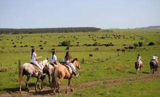 TURISMO : Uruguai apresenta muitas atrações para o outono