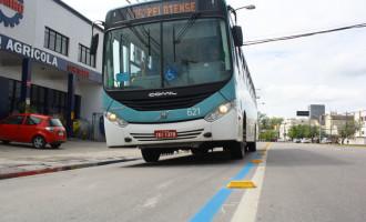 Câmara começa analisar ajuda financeira para as empresas do transporte coletivo