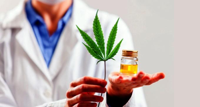 Medicamentos à base de cannabis podem ajudar no tratamento de doenças graves