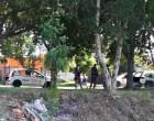 GOLPE DO TRATOR :  Vítima reage, pega a arma e mata dois