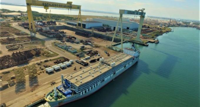 Porto do Rio Grande realiza maior embarque de gado da história