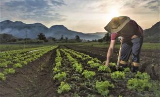 PROGRAMA TROCA-TROCA :  Agricultores familiares terão aumento no subsídio e anistia