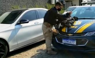 POLÍCIA RODOVIÁRIA : Apreensão de US$200 mil