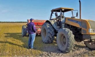 2020/2021 : Produtores começam semeadura da safra de arroz