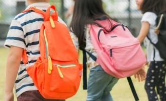 ESTADO : Sociedade de Pediatria sugere cautela no retorno às aulas