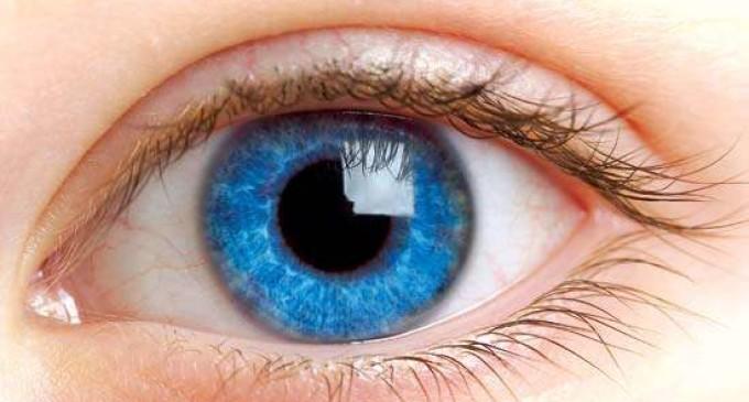 Sociedade de Oftalmologia alerta para os cuidados com os olhos na Primavera