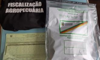 Ministério da Agricultura identifica fungos, bactérias e ácaro em pacotes de sementes não solicitados