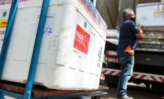 Lote com 116 mil doses de vacina contra a Covid-19 chega ao RS e começa a ser distribuído nesta segunda, 25