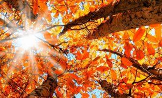 Outono começa no sábado