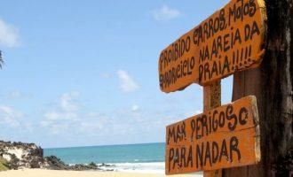 Escolha destinos sustentáveis para sua próxima viagem pelo Brasil