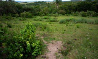 Incra identifica território quilombola em Piratini