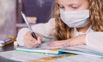 ENSINO PRIVADO : Retorno de alunos da Educação Infantil está entre 80 e 100%